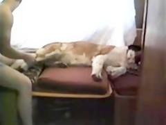 Zoofilia en la terraza con el perro 02