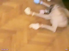 el sabueso encontro el conejo