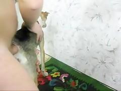 Sexo como perra en celo