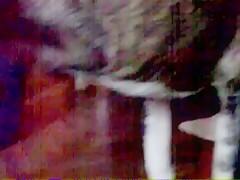 Zoofilia con el perro en la webcam