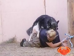 dog girl mount - Zoo sex porn