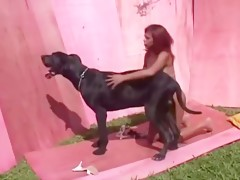 Girl takes dog cum  - Zoo sex porn
